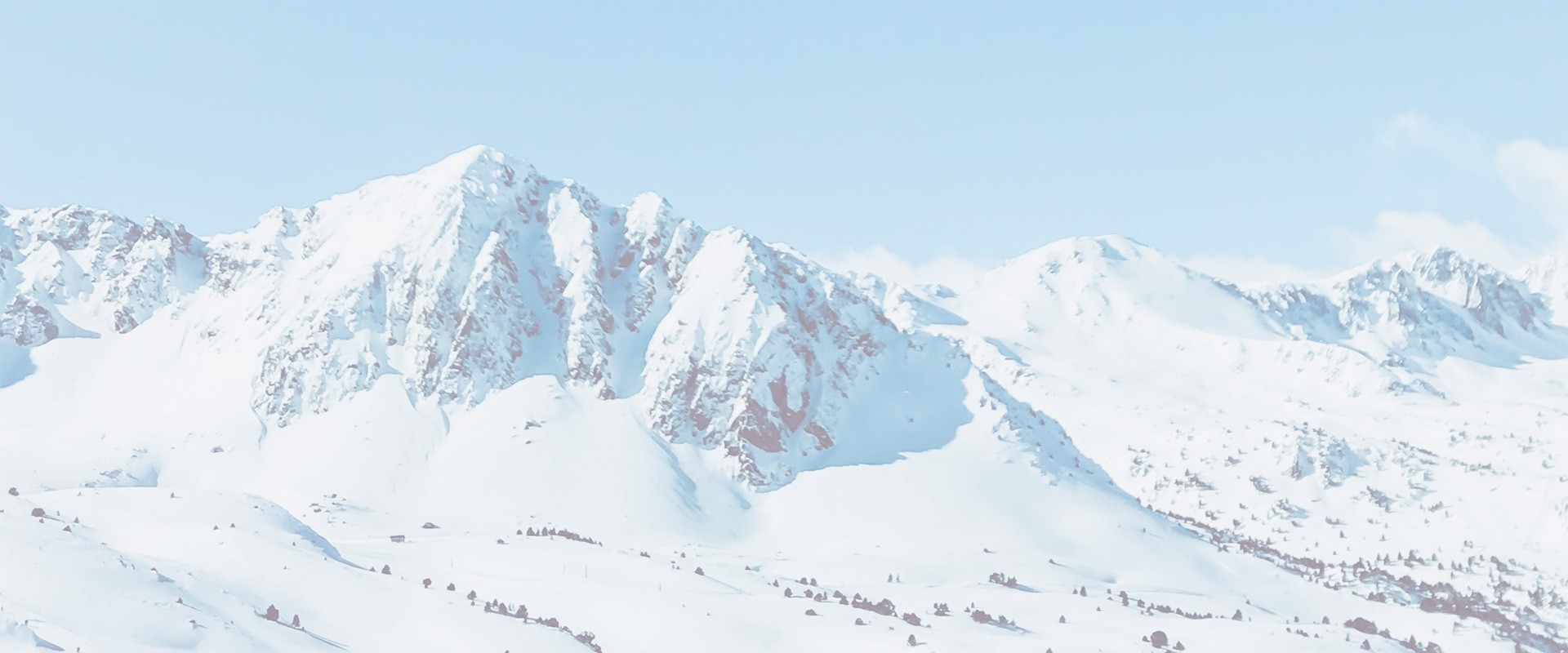 Ski DYNAMIC - find a reseller